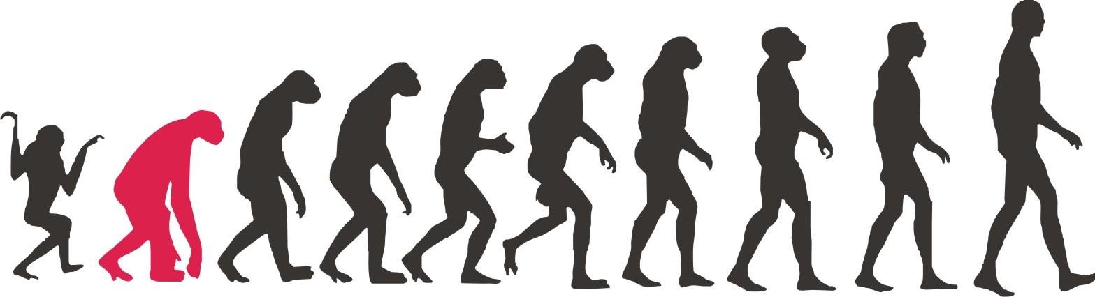Resultado de imagen para evolucion del hombre caricatura