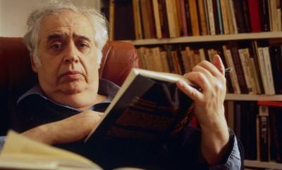 Harold Bloom. Foto: John Abbott / Corbis