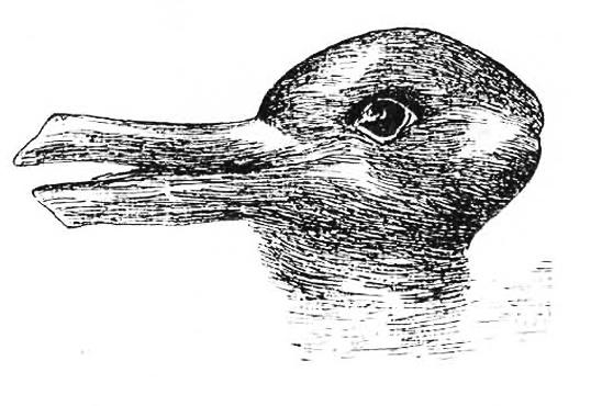 ¿Pato o conejo? La respuesta lleva tras de sí bastante más de lo que podemos imaginar.